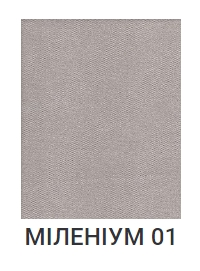 Милениум 01